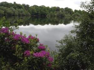 Bolam Lake D (11)