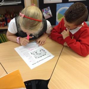 Literacy use of language (12)