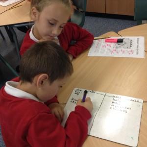 Literacy use of language (13)