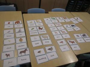 Classifying animal babies