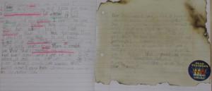 Ronan's Diary Entry