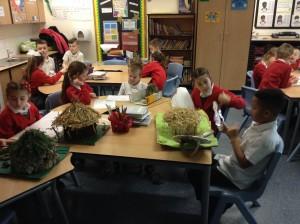 Homework Projects Oystercatchers (6)