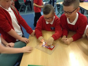 Science Circuits Dolphins (2)